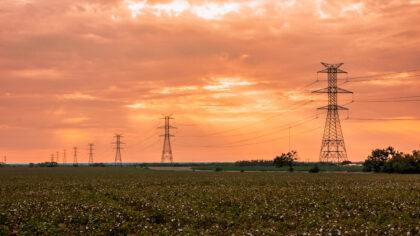 Texas Transmission Lines at Sunrise